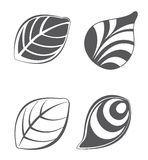 Collections of vector leaf design elements Royalty Free Stock Image