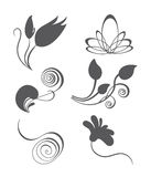 Collections of vector vintage floral design elemen Royalty Free Stock Images
