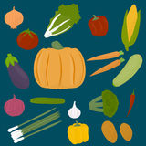 Collections of veggies Royalty Free Stock Photography