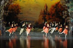 Collective jump-ballet Swan Lake Royalty Free Stock Photography