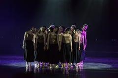 Collectivisme 4--Âne de drame de danse obtenir l'eau photographie stock