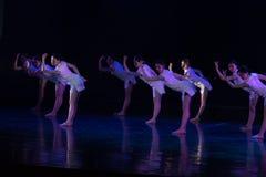 Collectivisme 1--Âne de drame de danse obtenir l'eau images stock