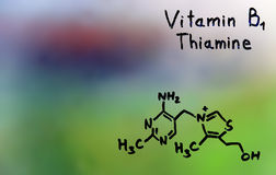 Colleen Fitzpatrick, formula, vitamine Fotografie Stock