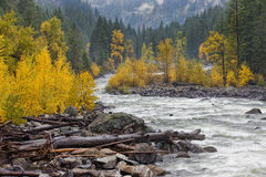 Collega la sponda del fiume Immagini Stock Libere da Diritti