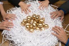 Collega's rond een nest van gouden eieren Royalty-vrije Stock Afbeeldingen