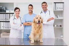 Collega veterinario che sorride alla macchina fotografica con il cane fotografie stock libere da diritti
