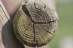 Collegamento degli elementi di legno Fotografie Stock