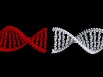 Collegamento del DNA Fotografia Stock