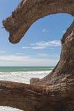 Collegamento strano la spiaggia Fotografie Stock