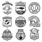 College athletic vector labels, logos, badges and emblems set. T-shirt design Royalty Free Stock Image