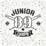 College baseball junior team emblem Royalty Free Stock Photo