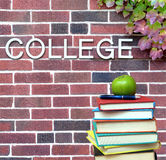 College book Stock Photography