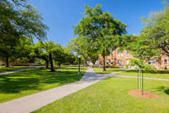 College campus. Typical American college campus with long walkways between buildings Stock Photography