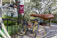 College of Charleston. The oldest municipal college in America, founded in 1770 stock photography