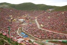 College Chinas Sichuan Seda Larong Buddha stockbilder