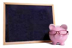 College education savings concept, Piggy bank wearing glasses with small blank blackboard, isolated Royalty Free Stock Images