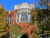 College with Fall Vines Royalty Free Stock Photos