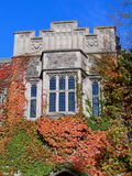 College with Fall Vines Stock Images