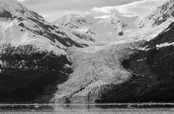 College Fjord Glacier. The view of College Fjord glacier in Prince William Sound, Alaska stock images