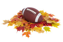 College football on fall leaves isolated on white. A college football sits on a pile of colorful fall leaves isolated on white Stock Image