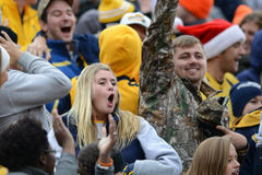 2014 College - Football - Siegesfeier Lizenzfreies Stockfoto