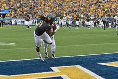 2014 College Football - Touchdown catch Royalty Free Stock Photo
