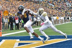 2014 College Football - Touchdown catch Stock Images