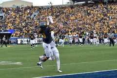 2014 College Football - Touchdown catch Royalty Free Stock Photos