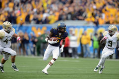 2014 College - Football - Yards nach Fang Stockbilder