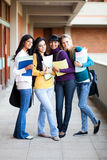 College girls. Group of young college girls full length portrait Stock Photo