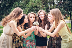 College Girls Blowing Dandelion Seeds Stock Photography
