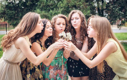 College Girls Blowing Dandelion Seeds Royalty Free Stock Images