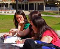 College girls studying. Female students outside sitting at a table studying Royalty Free Stock Photos