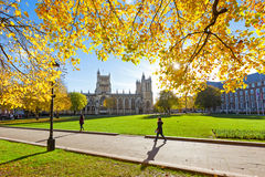 College Green and Bristol Cathedral Royalty Free Stock Image