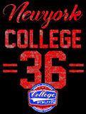 College New York typography, t-shirt graphics. College New York typography, t-shirt graphics fashion style Royalty Free Stock Photo