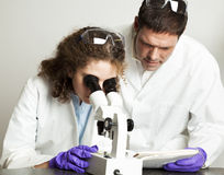 College Science Lab. College (or high school) student working in science lab.  Her teacher is looking over her notes Stock Image