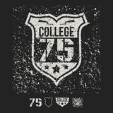College sport emblem and design elements Royalty Free Stock Photo