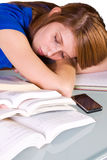 College Student Sleeping on her Desk Stock Photography