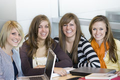 College Students. A study group of attractive female college students studying together on their laptop computers royalty free stock image