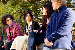College Students. A group of college or university students visiting and having fun Stock Image