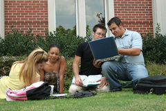 College Students. On campus.  Study session in the grass Royalty Free Stock Images