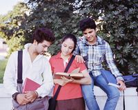 College students group. Group of Indian / Asian college students discussing  in the campus Royalty Free Stock Photos