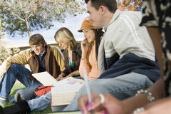 College Students Relaxing On Campus Stock Images