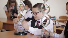 Schoolchildren in school uniform are studying the layout of dna sitting in the classroom. The concept of school. College students in school uniform are studying stock video footage