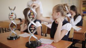 Schoolchildren in school uniform are studying the layout of dna sitting in the classroom. The concept of school. College students in school uniform are studying stock video