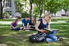 College students studying Royalty Free Stock Image