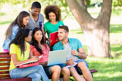College students studying at campus Stock Photography