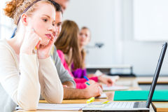 College students writing test Royalty Free Stock Photo
