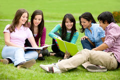 College or university students Royalty Free Stock Image