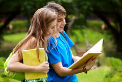 College or university students studying. Outdoors Royalty Free Stock Photo